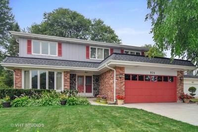 Schaumburg Single Family Home For Sale: 571 Tarpon Court