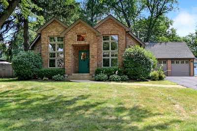 Barrington Single Family Home For Sale: 743 Meadow Lane