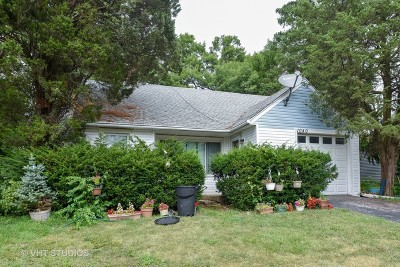Downers Grove Single Family Home For Sale: 1040 55th Street