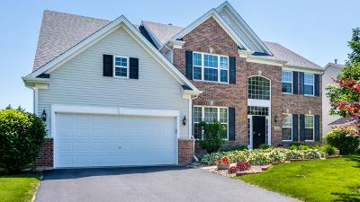 Bolingbrook Single Family Home For Sale: 1843 Raes Creek Drive