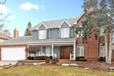 Mount Prospect Single Family Home For Sale: 311 South Bobby Lane