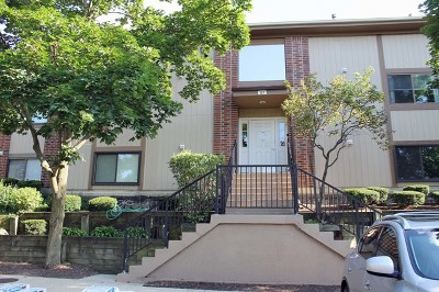 Bartlett Condo/Townhouse For Sale: 387 Wilmington Drive #102B