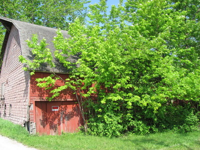 Elwood Residential Lots & Land For Sale: 19704 West Munch Lane