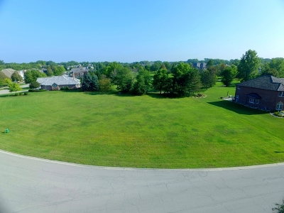 Lemont Residential Lots & Land For Sale: 125 Ruffled Feathers Drive