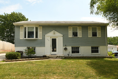 Mokena Single Family Home For Sale: 19527 Sycamore Street
