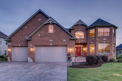 Plainfield Single Family Home For Sale: 13452 Skyline Drive