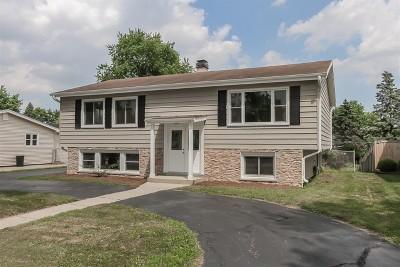 Addison Single Family Home Price Change: 933 South Michigan Avenue