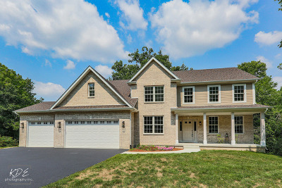 St. Charles Single Family Home New: 34w576 Iowa Avenue
