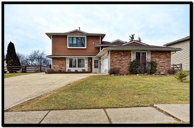 Roselle Single Family Home For Sale: 990 West Pine Avenue