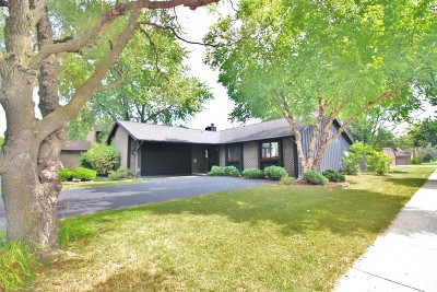 Roselle Single Family Home For Sale: 630 Lakeview Court