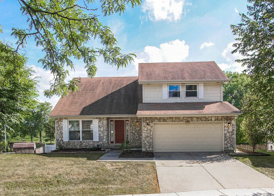 Hoffman Estates Single Family Home For Sale: 2029 Greens Court