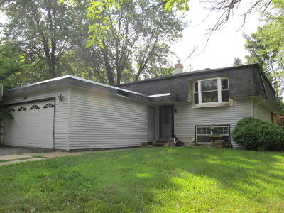 Buffalo Grove Single Family Home For Sale: 13 Columbus Parkway