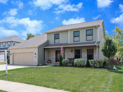 Carol Stream Single Family Home For Sale: 404 Burke Drive