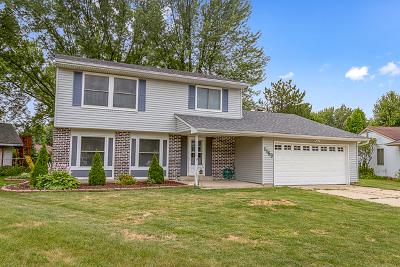 Elgin Single Family Home For Sale: 1159 Hecker Court