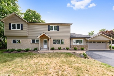 Palatine Single Family Home For Sale: 718 South Williams Avenue