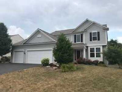 Oswego Rental For Rent: 227 Foster Drive