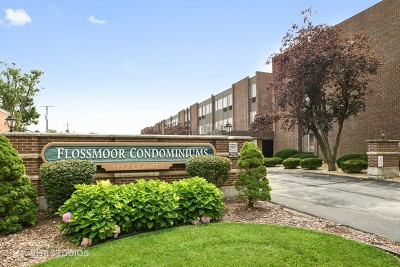 Flossmoor Condo/Townhouse For Sale: 1117 Leavitt Avenue #304