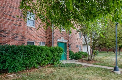 Lake In The Hills Condo/Townhouse For Sale: 1332 Cunat Court #1A