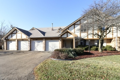 Orland Park Condo/Townhouse For Sale: 9039 Somerset Court #7