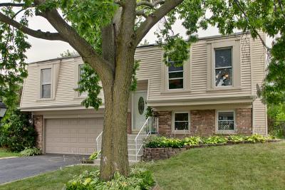 Roselle Single Family Home For Sale: 455 Norman Lane
