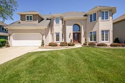 Woodridge Single Family Home For Sale: 1224 Richfield Court