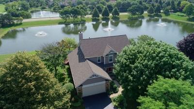 Algonquin Single Family Home For Sale: 6 White Oak Court