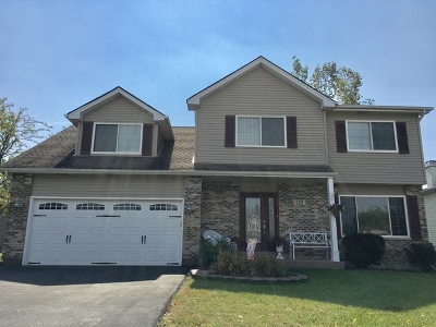 Bolingbrook Single Family Home For Sale: 132 South Canyon Drive