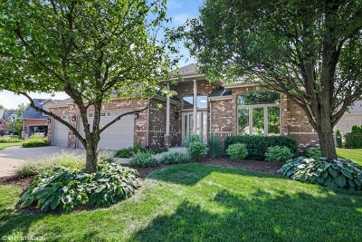 Orland Park Single Family Home For Sale: 14216 South 85th Avenue