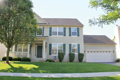 Elgin Single Family Home For Sale: 356 Comstock Drive
