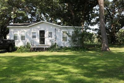 Wilmington Single Family Home For Sale: 30559 South Readman Lane