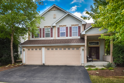 Geneva Single Family Home For Sale: 299 Daniels Way