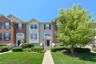 Bartlett IL Condo/Townhouse For Sale: $209,900