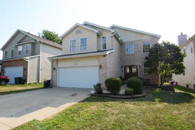 Villa Park Single Family Home For Sale: 1007 North Harvard Avenue