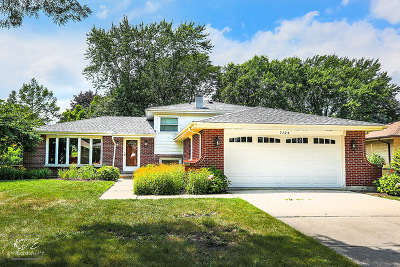 Downers Grove Single Family Home For Sale: 7124 Grand Avenue