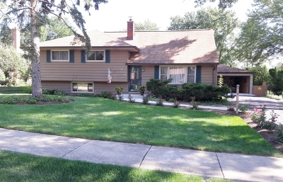 Lisle Single Family Home For Sale: 919 Inverness Road