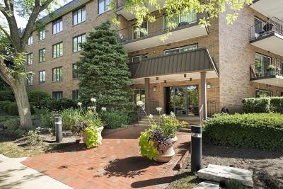 Winnetka Condo/Townhouse For Sale: 711 Oak Street #301