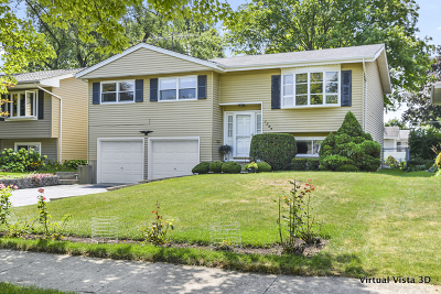 Wheaton Single Family Home For Sale: 1304 Wilson Avenue