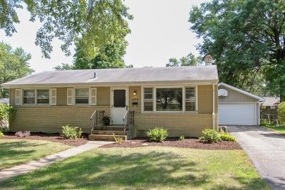 Cary Single Family Home Re-Activated: 435 Lloyd Street