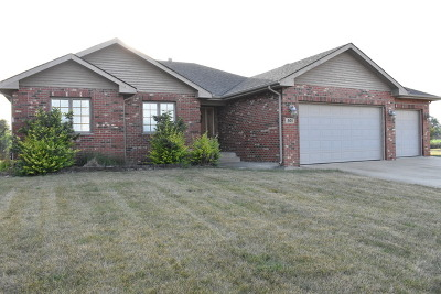 New Lenox Single Family Home For Sale: 501 Kingston Drive