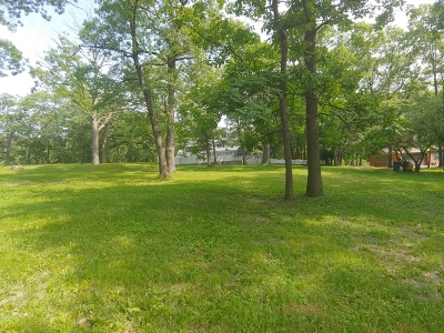 Palos Hills Residential Lots & Land For Sale: 8940 West 102nd Place