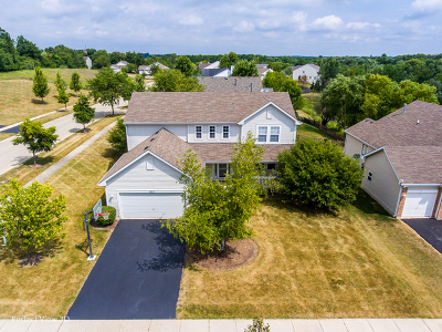 Round Lake Single Family Home For Sale: 835 North Overlook Circle