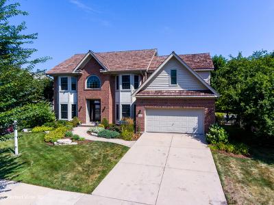 Aurora Single Family Home For Sale: 645 Clarendon Lane