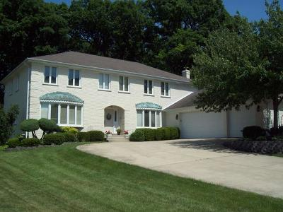 Palos Heights, Palos Hills Single Family Home Contingent: 7246 Pottawatomi Drive