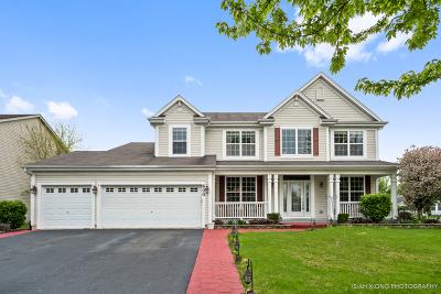 Oswego Single Family Home For Sale: 600 Vista Drive