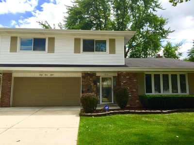 Matteson Single Family Home For Sale: 4315 Applewood Lane