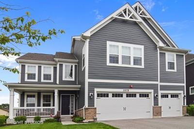 Hoffman Estates Single Family Home For Sale: 3575 Elsie Lane