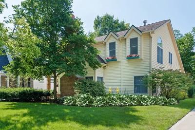 Hinsdale Single Family Home For Sale: 234 Fuller Road