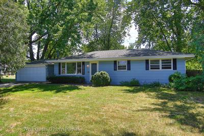 Braidwood Single Family Home For Sale: 353 David Court