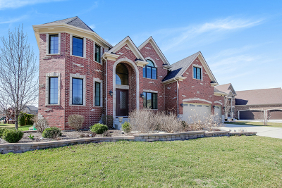 Naperville Single Family Home For Sale: 1976 Saddle Farm Lane