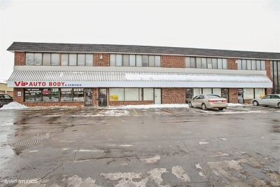 Schaumburg Commercial For Sale: 535 West Wise Road